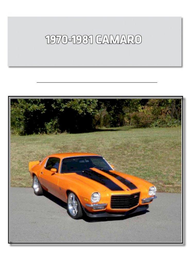 1970-1981 Chevrolet Camaro Fender Patch Rear RH
