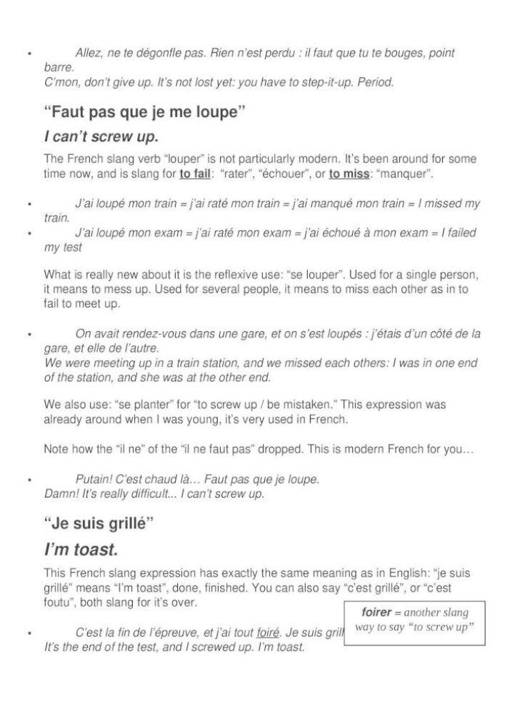 Fre Viewmodern French Slang Of The Millennium Le Parler D Jeunes Part 4 By Camille Chevalier Karfis April 11 2016